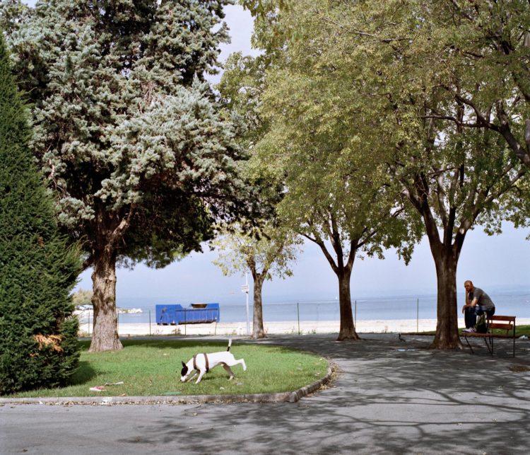 Brigitte Bauer | Aller aux jardins | 2010-2011 | Martigues, jardin de la Rode, série Aller aux Jardins 2010-11, réalisée dans le cadre du programme Images Contemporaines/Patrimoine du CG13