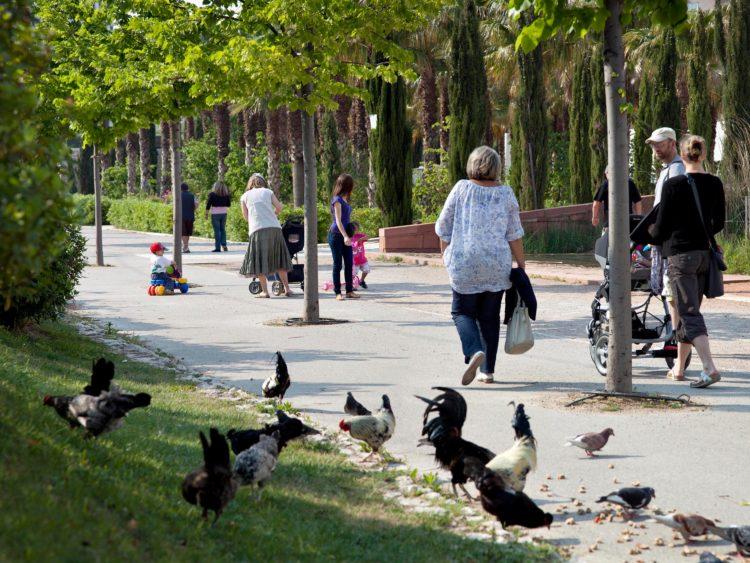Marseille, parc du 26° Centenaire, série Aller aux Jardins 2010-11, réalisée dans le cadre du programme Images Contemporaines/Patrimoine du CG13