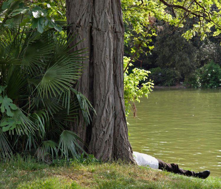 Marseille, parc Borély, série Aller aux Jardins 2010-11, réalisée dans le cadre du programme Images Contemporaines/Patrimoine du CG13