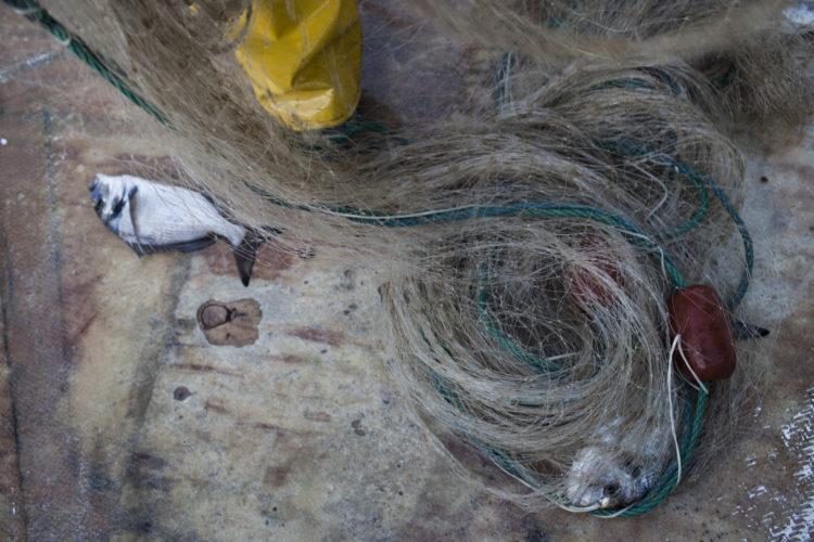 Hélène David | L'esprit des calanques | 2008-2011 | La pêche au petit métier au coeur du parc national des calanques