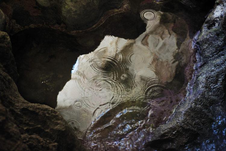 Hélène David | Noces ou les confins sauvages | 2012-2017 | La grotte , entre Callelongue et Marseilleveyre.