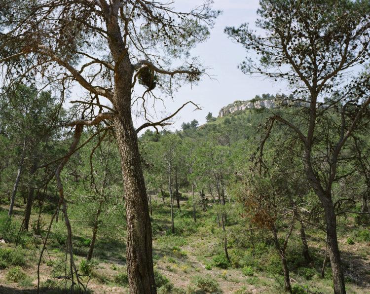 Sylvain Duffard | Observatoire photographique des paysages des Alpilles | 2011 | sans titre, PNR des Alpilles