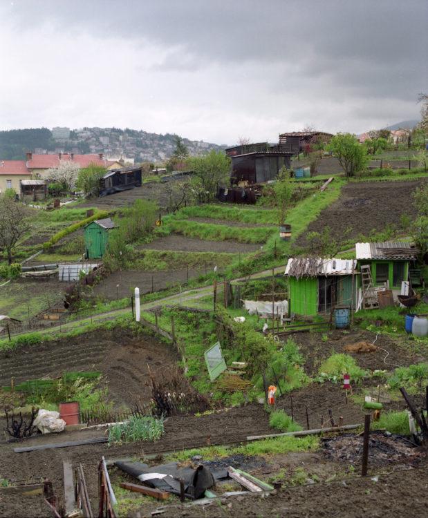 Anne Loubet   Les jardins ouvriers   1998-1999   JARDINS OUVRIERS À ST ETIENNE AU PIED D'UNE TOUR D'HABITATION COLLECTIVE