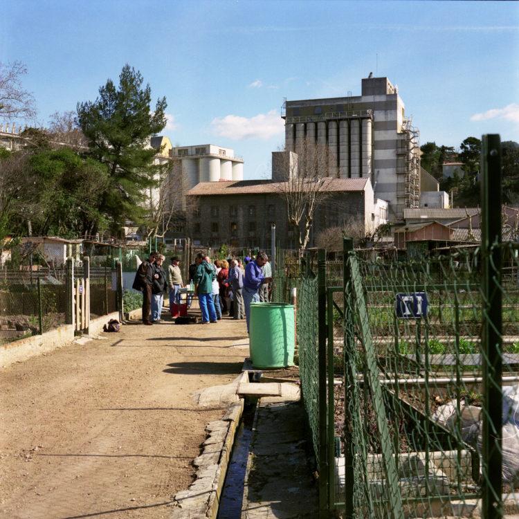 Anne Loubet   Les jardins ouvriers   1998-1999   JOURNÉE DE TRAVAIL COLLECTIF AU JARDIN MAGALI AIGUIER A LA VALENTINE, MARSEILLE. AU LOIN LES SILOS DE L'USINE DES GRANDS MOULINS