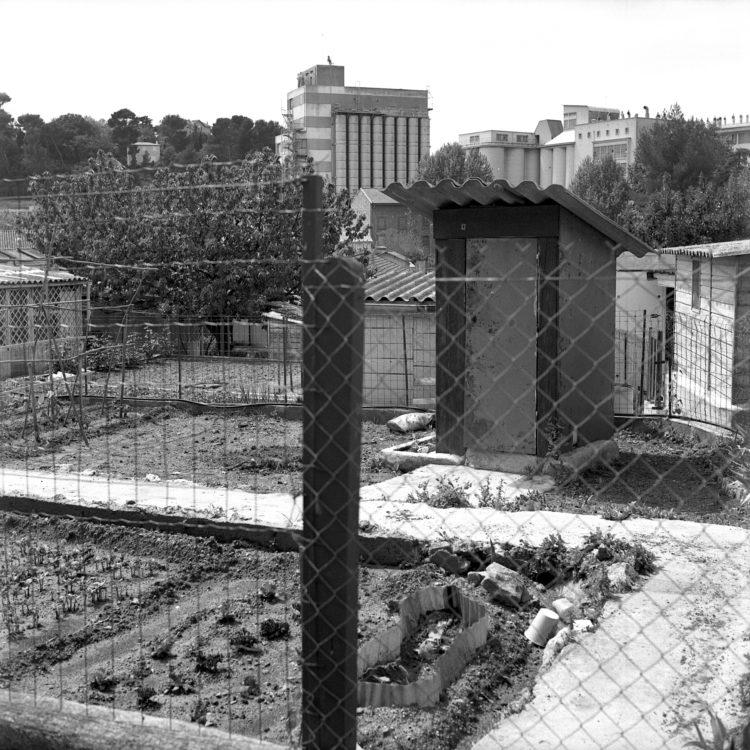 Anne Loubet   Les jardins ouvriers   1998-1999   PARCELLE AVEC VUE SUR LES SILOS DES GRANDS MOULINS, JARDIN MAGALI AIGUIER A LA VALENTINE, MARSEILLE, FÉDÉRATION NATIONALE DES JARDINS FAMILIAUX ET COLLECTIFS