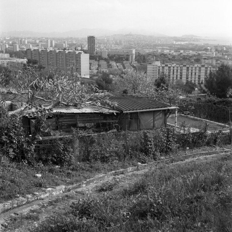 Anne Loubet   Les jardins ouvriers   1998-1999   JARDIN DU CASTELLAS AUX  AYGALADES, MARSEILLE, VUE DE LA CITÉ D'HABITATIONS  DU CASTELLAS AU LOIN