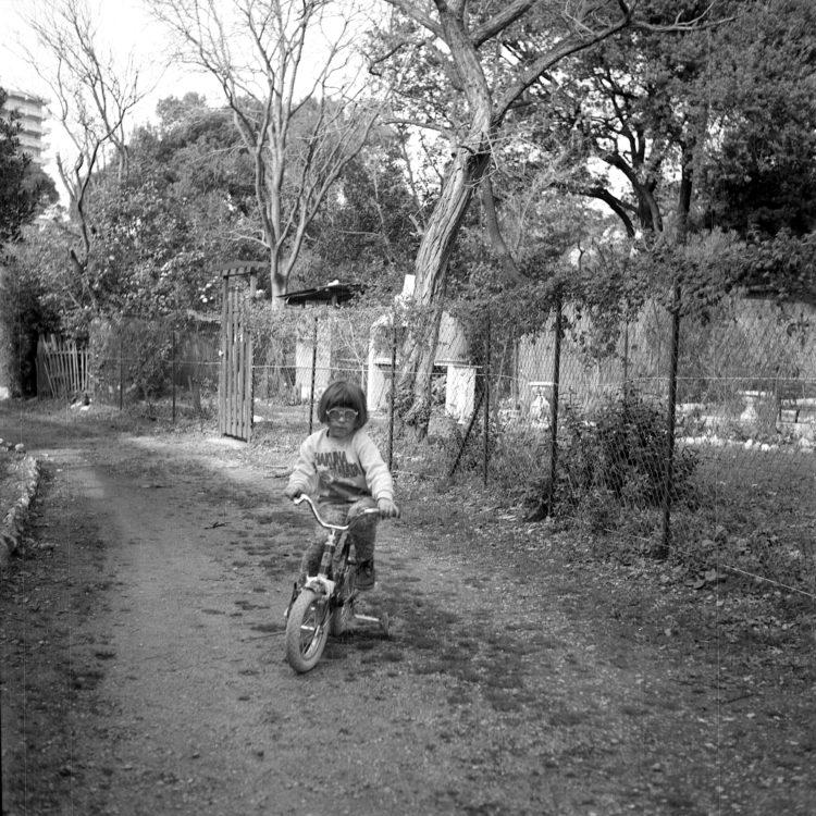 Anne Loubet   Les jardins ouvriers   1998-1999   JARDIN JOSEPH AIGUIER A MAZARGUES, MARSEILLE, FÉDÉRATION NATIONALE DES JARDINS FAMILIAUX ET COLLECTIFS.