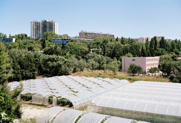 Geoffroy Mathieu | Marseille, ville sauvage | 2007-2010 | Quartiers Est, la Fourragère. Serres agricoles sur l'emprise du foncier acquis par la ville au milieu du XXe siècle pour la voie de contournement L2.