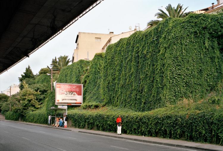 Centre-ville, Belle-de-Mai. Mur de lierre avenue de Plombières.