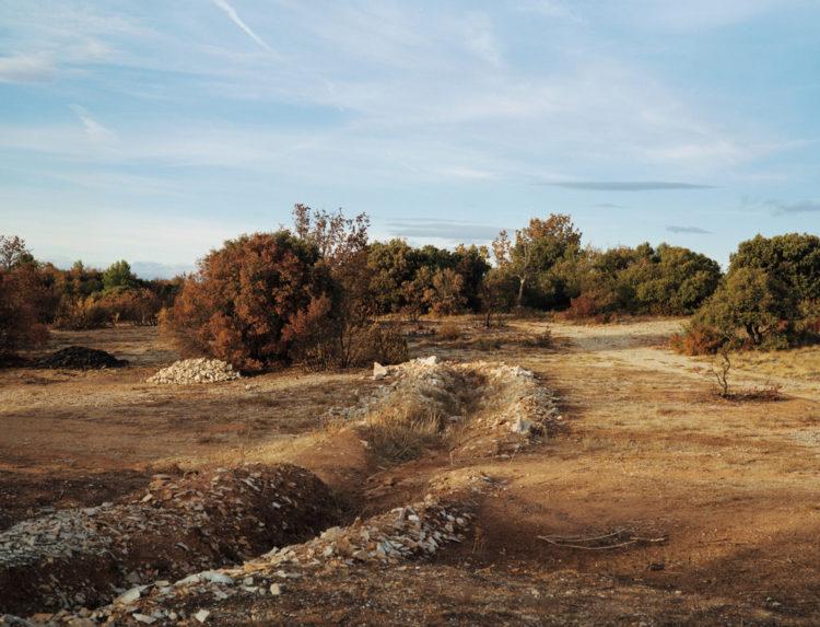 Julien Marchand | From the wasteland | 2015-2019 | terre dorée, autour de la D35.