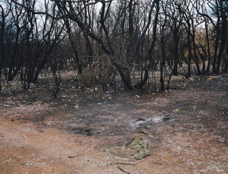 Julien Marchand | From the wasteland | 2015-2019 | grand incendie, autour de la D3.