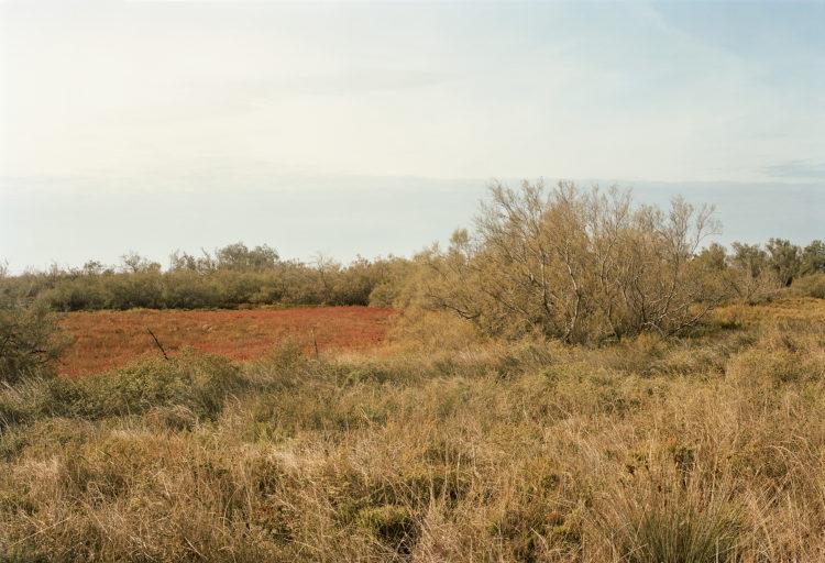 Thibaut Cuisset | Le pays clair, Camargue | 2011-2012 | La Capelière, route de Fiélouse, Arles. 2012