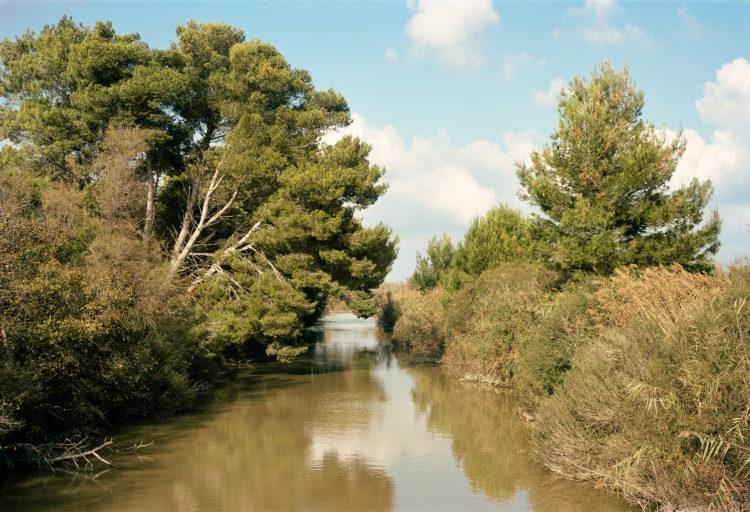 Thibaut Cuisset | Le pays clair, Camargue | 2011-2012 | Tour du Valat, Le Sambuc, Arles. 2011