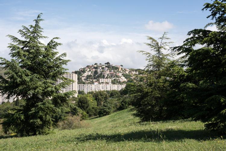 Anne Loubet | Marseille les collines | 2006-2020 | ROND POINT DU GRAND LITTORAL ET SES PINS ATYPIQUES, VUE SUR LA CITE DE LA CASTELLANE ET LA COLLINE RESIDENTIELLE DE VERDURON, QUARTIER DE ST ANTOINE, MARSEILLE15