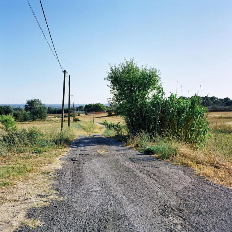 Sylvain Maestraggi | Autour d'Aix-en-Provence | 2012-2020 | Chemin de la Doudonne, été 2012