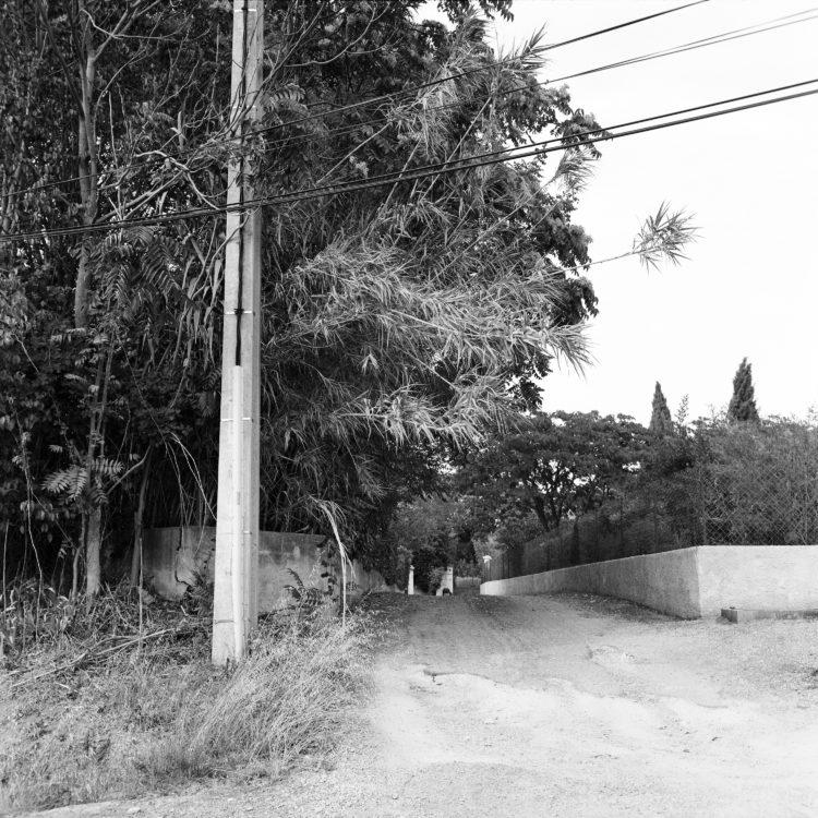 Sylvain Maestraggi | Autour d'Aix-en-Provence | 2012-2020 | Chemin de Fontfiguière, été 2016
