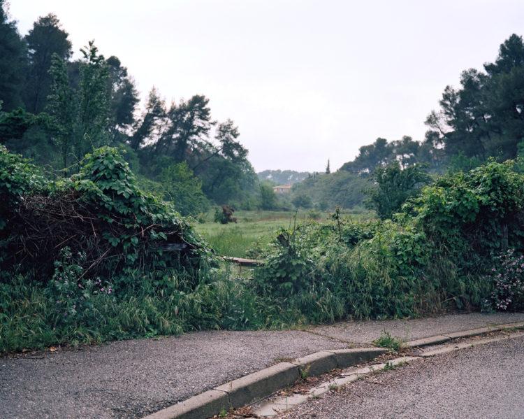 Chemin de Saint-Donat, printemps 2018