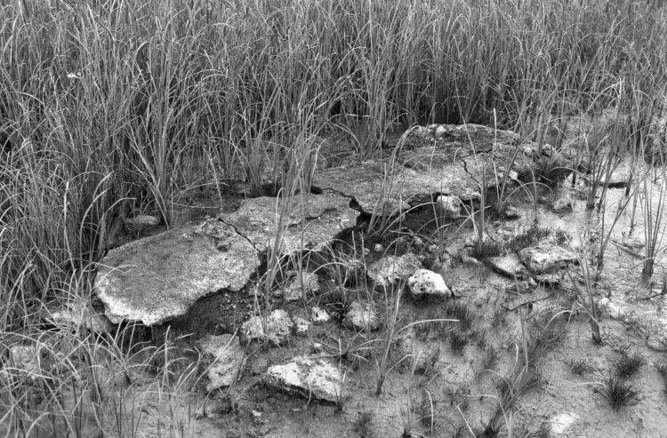 Extrait de SOUDE-Vestiges de l'industrie chimique au XIXème siècle dans les Bouches-du-Rhône - 1988-1993. Série Plan d'Aren: vestige d'exploitation, plan rapproché.
