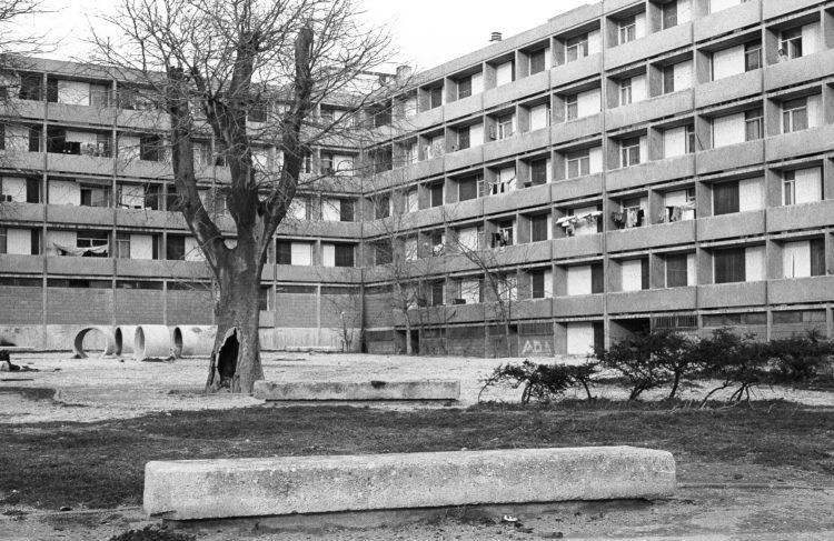 Fabrice Ney | ZUP n°1 | 1980-1983 | Extrait de ZUP n°1 - Marseille  -1981-1983. Bancs en béton, végétation, jeux en béton. Façade en angle arrière du B.