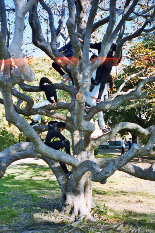 Teenagers climb a tree at Longchamp park in Marseille, France, 2017.