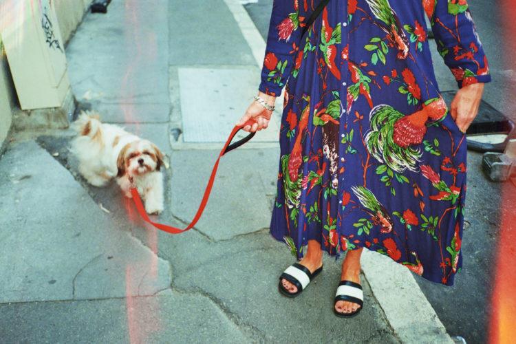 Sam Phelps | Belladone | 2017-2020 | A woman walks a dog at Reformes Marseille, France, 2018.