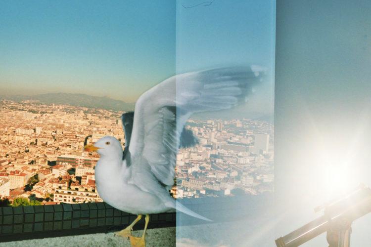 Sam Phelps   Belladone   2017-2020   A seagull takes flight at Notre Dame de la Garde in Marseille, France, 2018.
