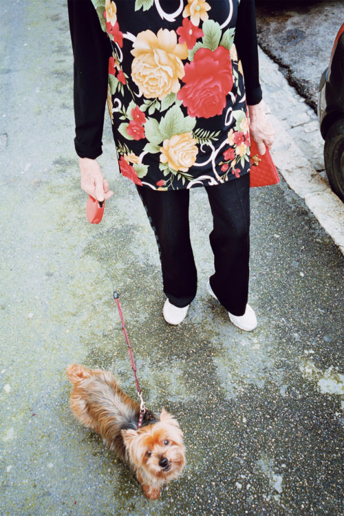 Sam Phelps   Belladone   2017-2020   A woman walks her dog in Chapitre, Marseille, France, 2018.