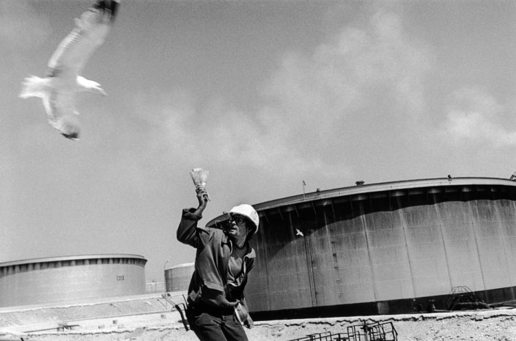 Franck Pourcel | La petite mer des oubliés – Gestes du travail | 1996-2006 | Gestes du travail | Photographie en N/B d'un homme qui chasse l'attaque d'un gabian