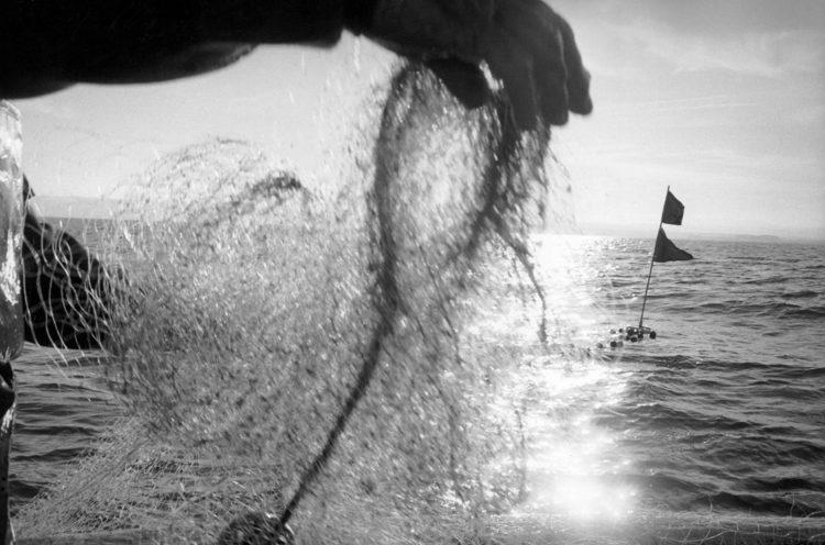 Franck Pourcel | La petite mer des oubliés – Gestes du travail | 1996-2006 | Gestes du travail | Photographie en N/B d'un pêcheur qui remonte ses filets dans la lumière