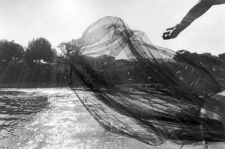 Franck Pourcel | La petite mer des oubliés – Gestes du travail | 1996-2006 | Gestes du travail | Photographie en N/B d'un geste de pêche au bord du rivage