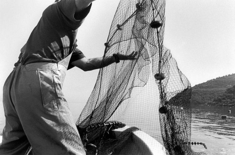 Franck Pourcel | La petite mer des oubliés – Gestes du travail | 1996-2006 | Gestes du travail | Photographie en N/B d'un pêcheur qui remonte le filet de pêche devant une forêt