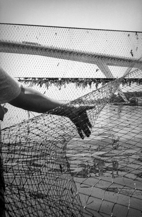 Franck Pourcel | La petite mer des oubliés – Gestes du travail | 1996-2006 | Gestes du travail | Photographie en N/B d'un homme qui avance en se tenant par le filet (calen)