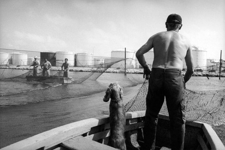 Franck Pourcel | La petite mer des oubliés – Gestes du travail | 1996-2006 | Gestes du travail | Photographie en N/B de deux barques qui se croisent au milieu des filets d'un calen de Port de Bouc. Dans une barque il y a trois hommes, dans l'autre un homme et son chien