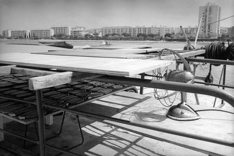 Franck Pourcel | La petite mer des oubliés – Gestes du travail | 1996-2006 | Gestes du travail | Photographie en N/B de la poutargue qui sèche