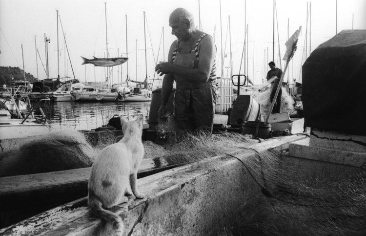 Franck Pourcel | La petite mer des oubliés – Gestes du travail | 1996-2006 | Gestes du travail | Photographie en N/B d'un pêcheur qui retire les poissons de ses filets et lance un loup sous le regard d'un chat