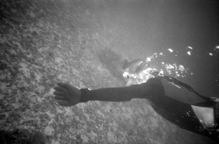 Franck Pourcel | La petite mer des oubliés – Luttes | 1996-2006 | Luttes | Photographie en N/B d'un homme qui plonge pour voir les fonds de l'étang