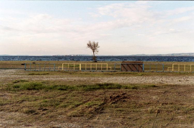 Franck Pourcel | La petite mer des oubliés – Paradoxes | 1996-2006 | Paradoxes | Photographie en couleur d'un arbre, tamaris, devant l'étang avec barrière couleur