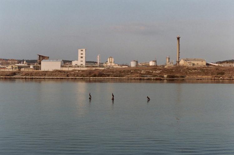 Franck Pourcel | La petite mer des oubliés – Paradoxes | 1996-2006 | Paradoxes | Photographie en couleur du canal de Caronte avec trois cormorans au milieu et des usines sur l'autres rives