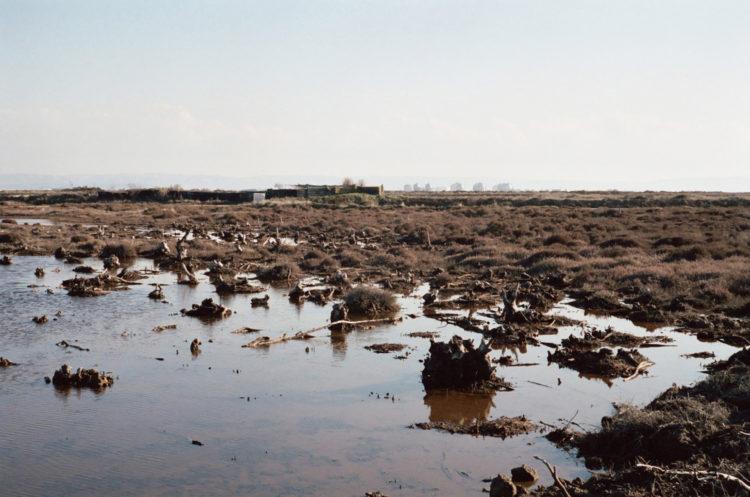 Franck Pourcel | La petite mer des oubliés – Paradoxes | 1996-2006 | Paradoxes | Photographie en couleur d'un marais avec les usines en fond