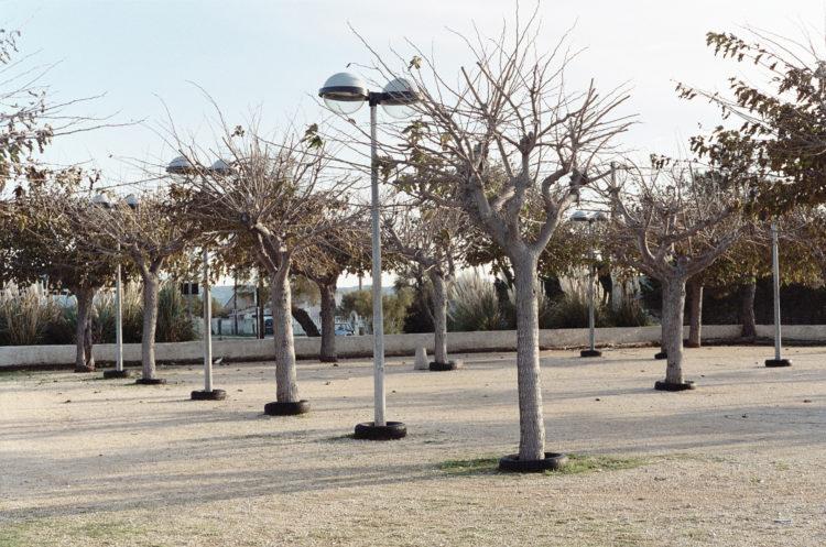 Franck Pourcel | La petite mer des oubliés – Paradoxes | 1996-2006 | Paradoxes | Photographie en couleur d'un terrain de boule avec des arbres dont à la base se trouve des pneus