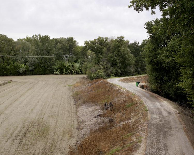 Bertrand Stofleth | Rhodanie | 2007-2015 | Rhodanie, Ile de la Barthelasse au nord d'Avignon, anciennes digues
