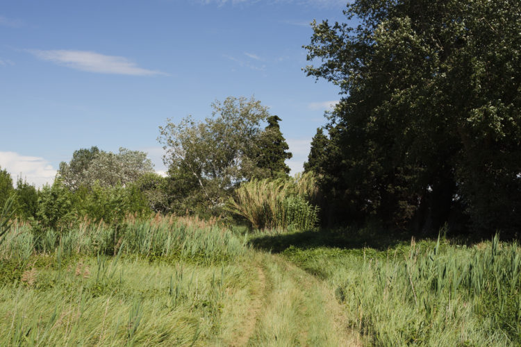 Philippe Piron | Repérage GR2013 : Lançon-Provence – Berre l'Étang | 2011 | repérage GR2013, des collines de Lançon de Provence à Berre l'étang, paysage rural, agriculture, oppidum Constantin