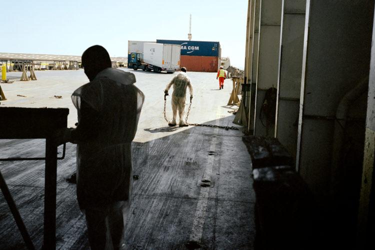 Christophe Negrel   Au cœur des dockers   2007
